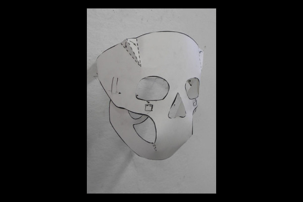 Skull Mapping Mask, installation view, stone lithography, 7x7x7""